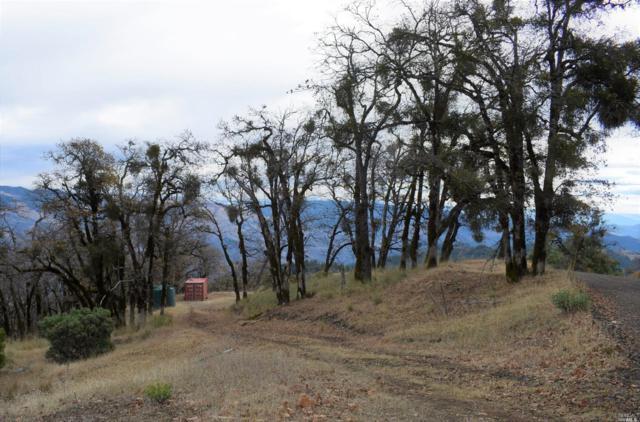51951 Iron Creek Road, Laytonville, CA 95454 (#21830795) :: Intero Real Estate Services