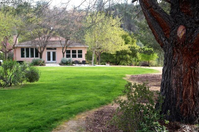 2189 County Road 41, Capay, CA 95679 (#21831099) :: Ben Kinney Real Estate Team