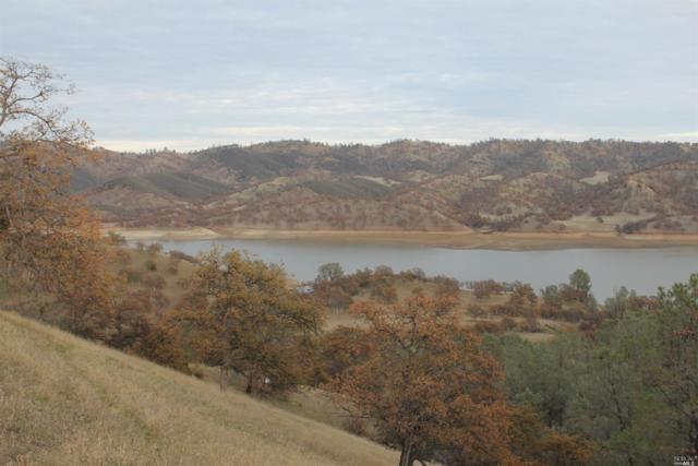 0 County 306 Road, Elk Creek, CA 95939 (#21831293) :: Intero Real Estate Services