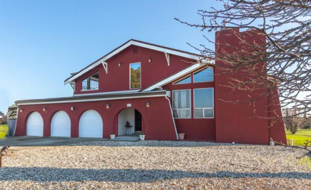 7455 Dry Creek Trail, Vacaville, CA 95688 (#21900640) :: Michael Hulsey & Associates
