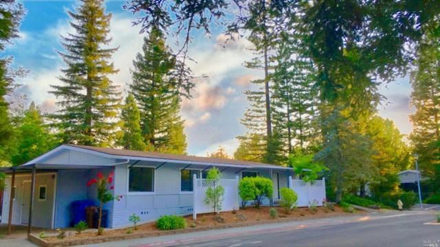 1 La Canada Court, St. Helena, CA 94574 (#21900657) :: RE/MAX GOLD