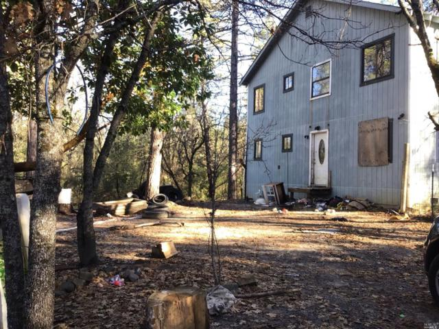 14284 Grizzly Hill Road, Nevada City, CA 95959 (#21900799) :: Ben Kinney Real Estate Team