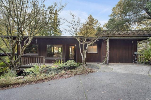 361 N Ferndale Avenue, Mill Valley, CA 94941 (#21900800) :: RE/MAX GOLD