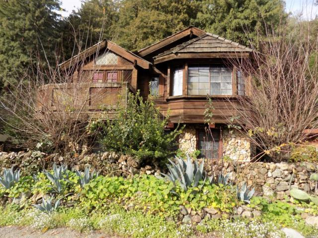 15510 River Road, Guerneville, CA 95446 (#21900807) :: RE/MAX GOLD