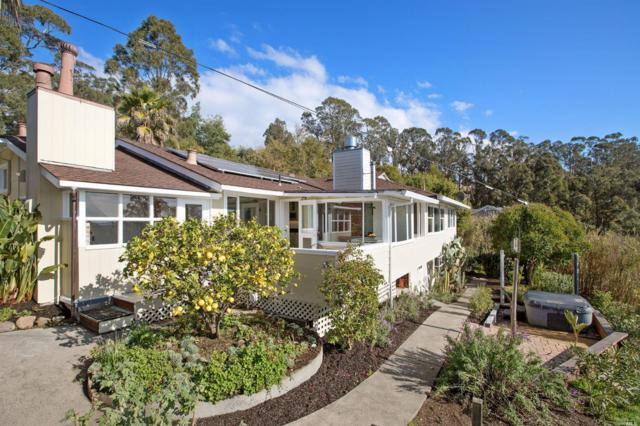 18 Brodea Way, San Rafael, CA 94901 (#21900850) :: Lisa Imhoff | Coldwell Banker Kappel Gateway Realty