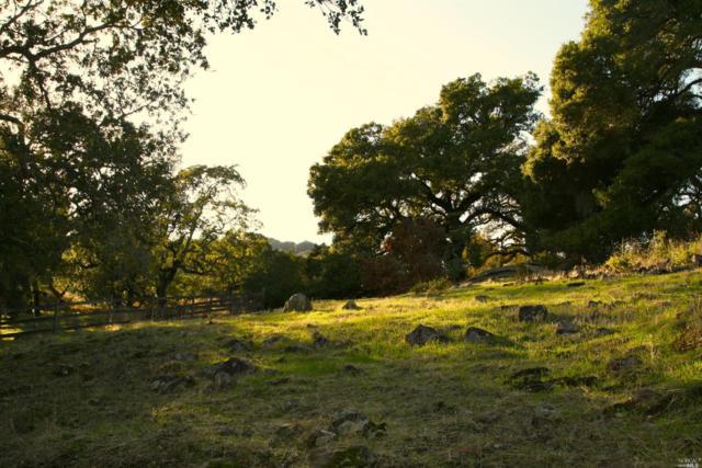 18954 Kenleigh Drive, Sonoma, CA 95476 (#21901179) :: RE/MAX GOLD