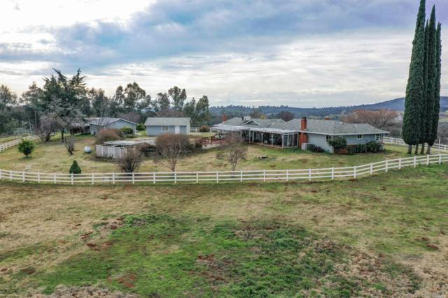 5990 Bald Mountain Road, Browns Valley, CA 95918 (#21901198) :: Perisson Real Estate, Inc.