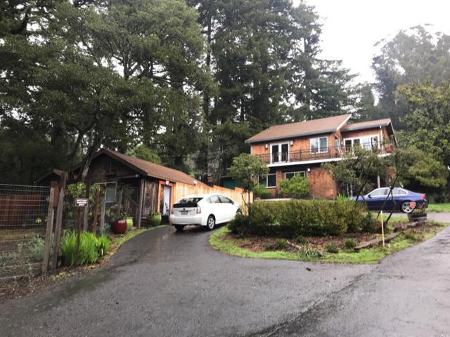 6 Heavenly Way, Mill Valley, CA 94941 (#21901570) :: Lisa Perotti | Zephyr Real Estate