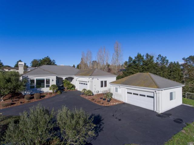 1499 Skillman Lane, Petaluma, CA 94952 (#21901589) :: RE/MAX GOLD