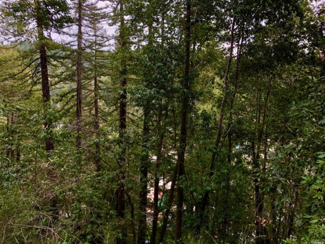 15630 Old River Road, Guerneville, CA 95446 (#21901599) :: W Real Estate | Luxury Team