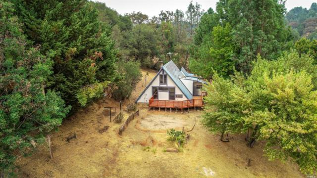 2300 Indian Rock Road, Cool, CA 95614 (#21901603) :: RE/MAX GOLD