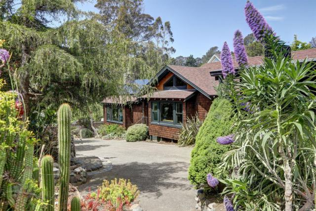 65 Brighton Avenue, Bolinas, CA 94924 (#21901662) :: RE/MAX GOLD