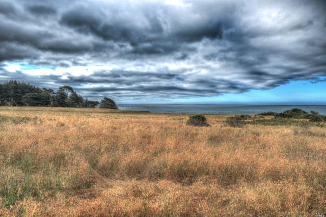 144 Pelican, The Sea Ranch, CA 95497 (#21901757) :: Ben Kinney Real Estate Team