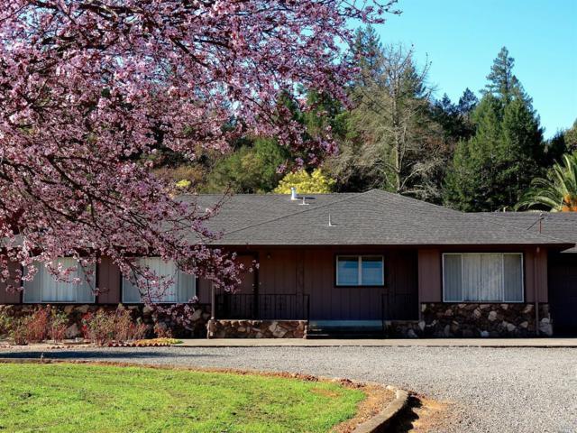 27377 Dutcher Creek Road, Cloverdale, CA 95425 (#21901787) :: Ben Kinney Real Estate Team