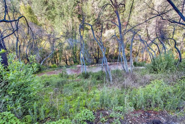 2001 Mark West Springs Road, Santa Rosa, CA 95404 (#21901811) :: W Real Estate | Luxury Team