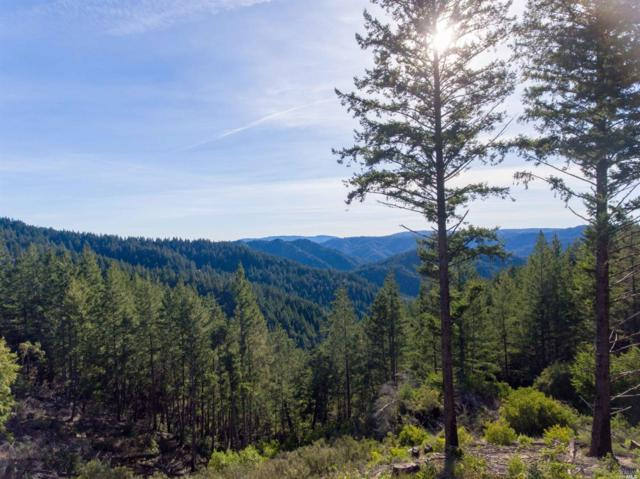 27384 Mountain View Road, Boonville, CA 95415 (#21901843) :: Michael Hulsey & Associates