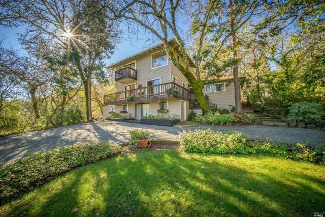3051 Saint Helena Highway N, St. Helena, CA 94574 (#21901875) :: Ben Kinney Real Estate Team