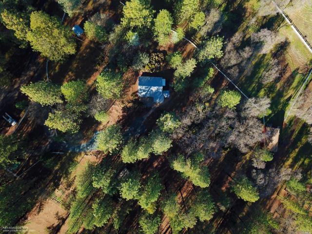 18969 Hiers Road, Grass Valley, CA 95949 (#21902050) :: Ben Kinney Real Estate Team