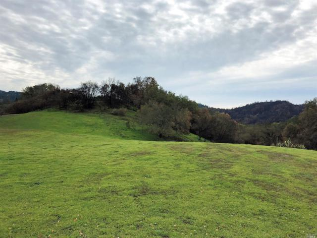 4470 Mountain Home Ranch Road, Calistoga, CA 94515 (#21902198) :: Ben Kinney Real Estate Team