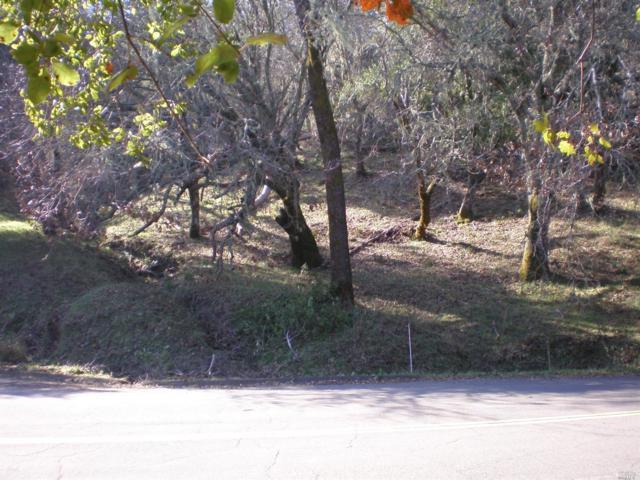 0 Circle Oaks Drive, Napa, CA 94558 (#21902218) :: RE/MAX GOLD
