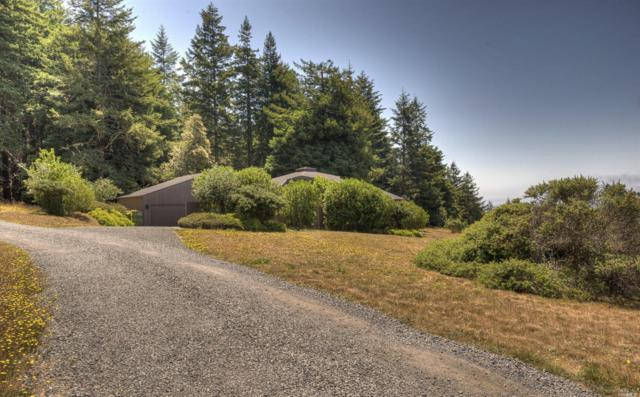 208 Lupine, The Sea Ranch, CA 95497 (#21902325) :: Ben Kinney Real Estate Team