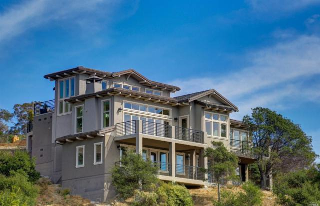 31 Drakes Cove Court, Larkspur, CA 94939 (#21902379) :: RE/MAX GOLD