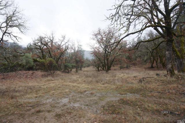 31 Angel Hill Road, Weaverville, CA 96093 (#21902680) :: Rapisarda Real Estate