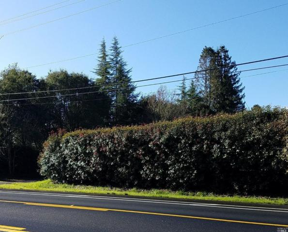 1020 Gravenstein Highway N, Sebastopol, CA 95472 (#21902721) :: RE/MAX GOLD