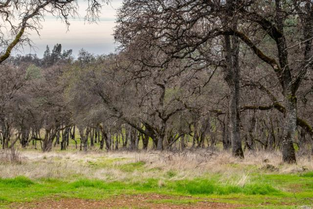 8455 Thousand Oaks Lane, Other, CA 95991 (#21902843) :: Rapisarda Real Estate
