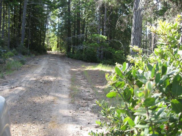 42480 Roseman Creek Road, Gualala, CA 95445 (#21902905) :: Ben Kinney Real Estate Team