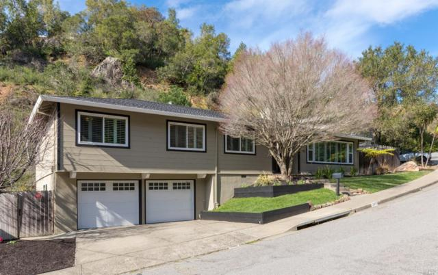295 Mountain View Avenue, San Rafael, CA 94901 (#21902960) :: Lisa Perotti | Zephyr Real Estate