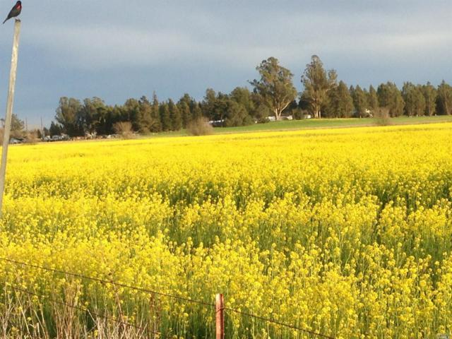 595 Stony Point Road, Petaluma, CA 94952 (#21902973) :: Lisa Perotti | Zephyr Real Estate