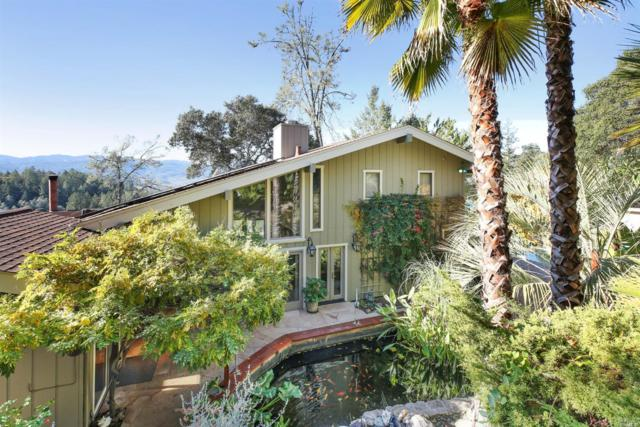 1060 Deer Park Road, St. Helena, CA 94576 (#21903018) :: Ben Kinney Real Estate Team