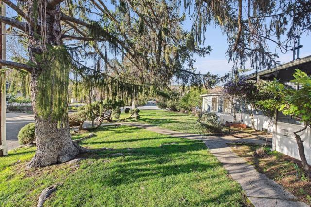 7 Ichabod Court, San Anselmo, CA 94960 (#21903115) :: W Real Estate   Luxury Team