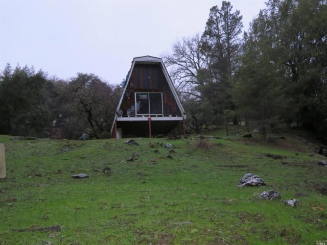 8900 Feliz Creek Drive, Ukiah, CA 95482 (#21903160) :: Ben Kinney Real Estate Team
