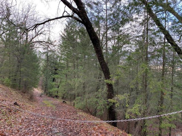 9550 Seigler Springs North Road, Kelseyville, CA 95451 (#21903190) :: Ben Kinney Real Estate Team