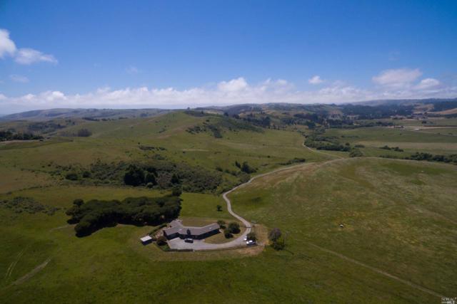 17260 Bodega Highway, Bodega, CA 94922 (#21903278) :: W Real Estate | Luxury Team