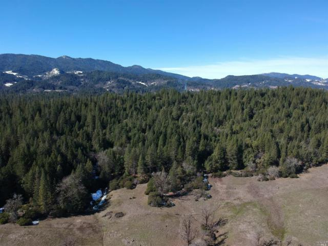 49525 Valley Drive, Laytonville, CA 95454 (#21903544) :: Intero Real Estate Services