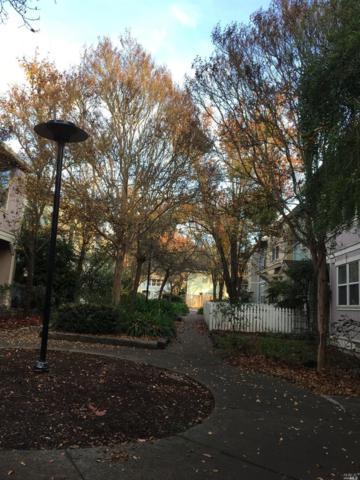 310 Taylor View Drive, Santa Rosa, CA 95404 (#21903601) :: Ben Kinney Real Estate Team