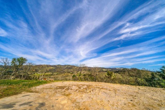 25 Winter Brook Lane, Santa Rosa, CA 95404 (#21903629) :: Ben Kinney Real Estate Team