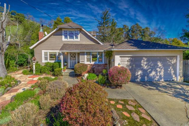 224 Blackstone Drive, San Rafael, CA 94903 (#21903752) :: Ben Kinney Real Estate Team