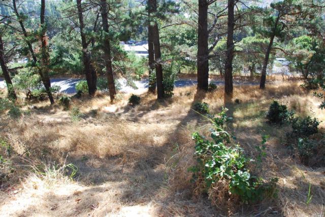 0 Meadowsweet Drive, Corte Madera, CA 94925 (#21903974) :: Rapisarda Real Estate
