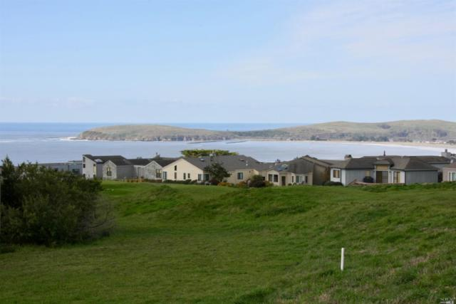20670 Heron Drive, Bodega Bay, CA 94923 (#21904083) :: W Real Estate | Luxury Team