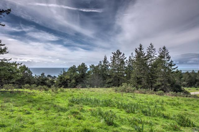 100 Lupine Close, The Sea Ranch, CA 95497 (#21904324) :: Rapisarda Real Estate