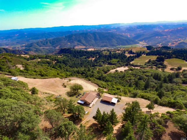 24495 Cloverdale Peak Road, Hopland, CA 95449 (#21904358) :: W Real Estate | Luxury Team