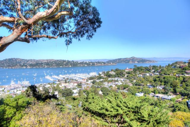 51 George Lane, Sausalito, CA 94965 (#21904428) :: Rapisarda Real Estate