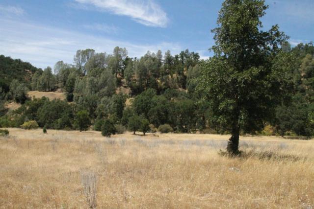 31975 Mendocino Pass Road, Covelo, CA 95428 (#21904492) :: Michael Hulsey & Associates