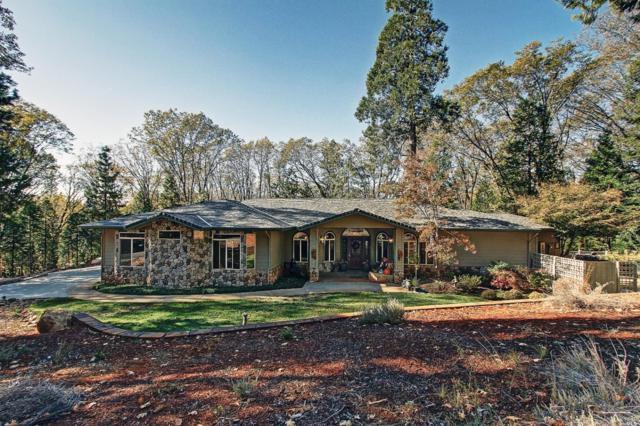 13620 Bass Trail, Grass Valley, CA 95945 (#21904619) :: Rapisarda Real Estate