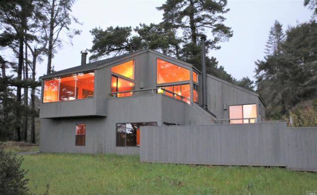 36521 Sculpture Point Drive, The Sea Ranch, CA 95497 (#21904986) :: Rapisarda Real Estate