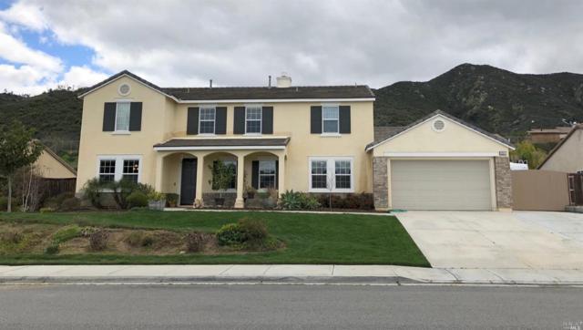 20537 Big Sycamore Court, Wildomar, CA 92595 (#21905205) :: Rapisarda Real Estate